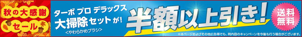 ★ターボ プロ デラックス 大掃除セットが半額★さらに送料無料!