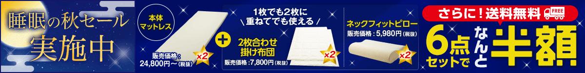 大人気!低反発マットレスと掛け布団、枕が2個ついて半額!