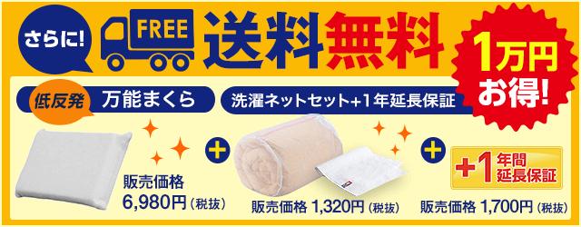ホオンテックが入る洗濯ネットなどがセットで1万円以上お得!さらにWEBなら送料無料!
