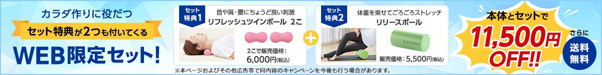 【送料無料】リフレッシュツインボール2個とリリースポールをセットでお届け!