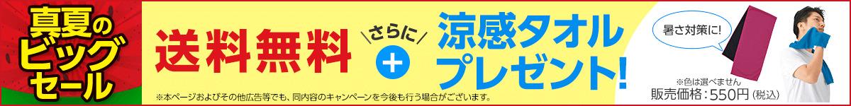 【送料無料】涼感タオルをセットでお届け!