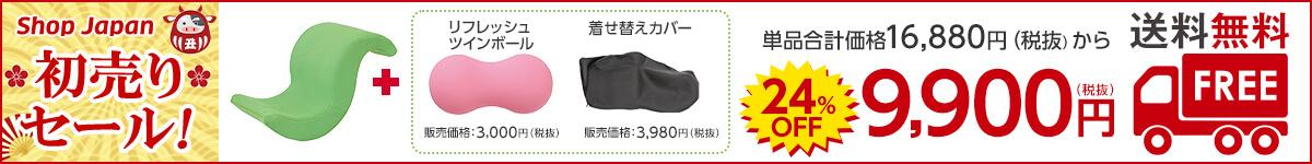 【送料無料】ツインボールと着せ替えカバーのセットが41%OFFの9900円(税抜)