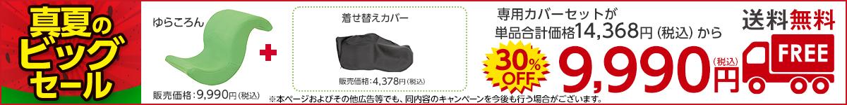 【送料無料】専用カバーがセットで付いて9,990円(税込)