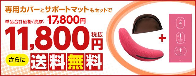 専用カバーとサポートマットがセットで11,800円(税抜)!さらに送料無料!