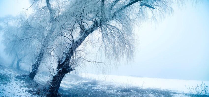 室温が寒すぎる 睡眠時の肩の痛みに適した枕の選び方