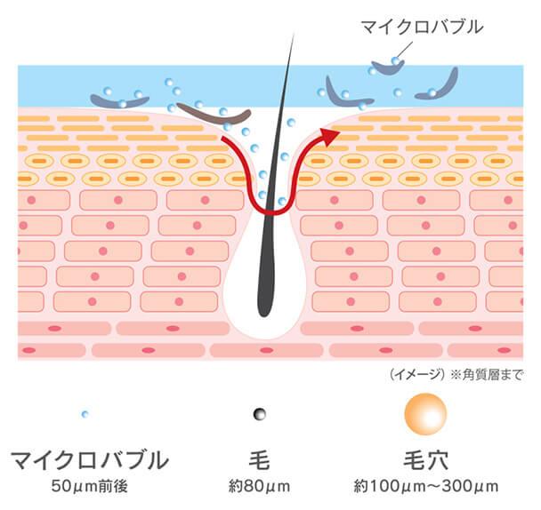 マクロバブル (イメージ)※角質層まで マイクロバブル 50μm前後 毛 約80μm 毛穴 約100μm~300μm