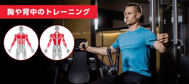 胸や背中のトレーニング