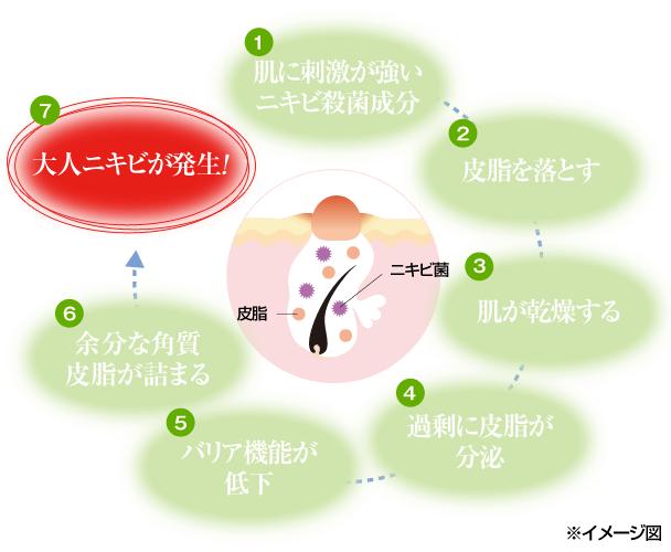 (1)肌に刺激が強いニキビ殺菌成分 (2)皮脂を落とす (3)肌が乾燥する (4)過剰に皮脂が分泌 (5)バリア機能が低下 (6)余分な角質皮脂が詰まる (7)大人ニキビが発生!