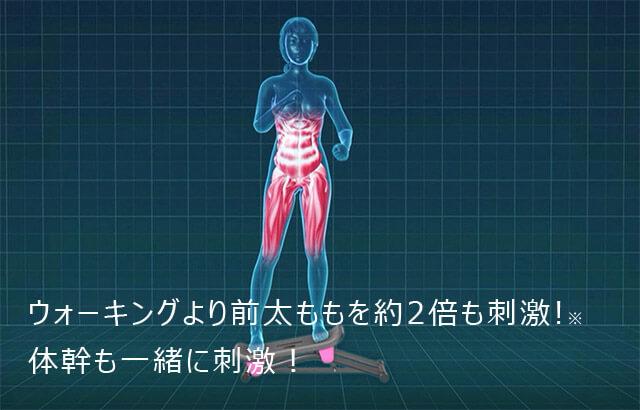 ウォーキングより前太ももを約2倍も刺激!※ 体幹も一緒に刺激!