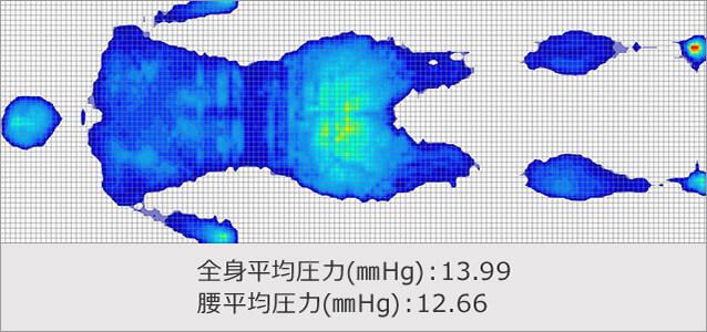 体圧分散 トゥルースリーパー プレミアケア